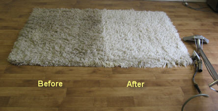how to clean wampa rug