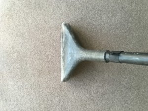 carpet cleaning Curl Curl 2096